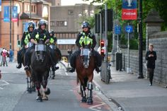 Do Mounted Police Officers Have to Clean Up Their Horse's Poop?