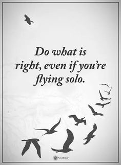 """Best Inspirational Quotes : Life Sayings Do What Is Right, Flying Solo short inspirational quotes about life """"Do What is right, even if You're flying solo. Fly Quotes, Bird Quotes, Good Life Quotes, Inspiring Quotes About Life, Quotes To Live By, Life Sayings, Random Quotes, Real Quotes, Amazing Quotes"""
