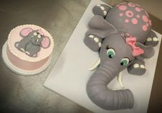 Adorable elephant birthday cake and smash cake by 3 Women and an Oven. www.3womendesserts.com