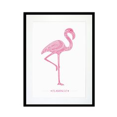 Flamingo Print | Eleanor Stuart | Wolf & Badger