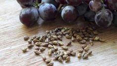 Estas semillas dejarían sin trabajo a muchos doctores, porque destruye hasta la enfermedad más mortífera