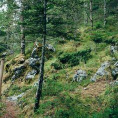 Sendero ecológico La Puerta del Cielo Todos Santos Cuchumatán Huehuetenango. #guatemala #guatemalaphotostock #paisaje #landscape #landscapephotography #like4like #naturaleza #nature #naturephoto #naturegram #instatravel #instanature #travelgram #travel #viajexguatemala #trekking #adventure #aventura #naturephoto #explorahuehue