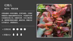 20120910160739_NaMvy.jpeg 1,043×3,470 pixels