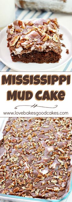 Mud Cake Mississippi Mud Cake - a Southern classic cake with chocolate, marshmallows, and pecans! Everyone asks for THIS recipe!Mississippi Mud Cake - a Southern classic cake with chocolate, marshmallows, and pecans! Everyone asks for THIS recipe! 13 Desserts, Southern Desserts, Delicious Desserts, Southern Food Recipes, Potluck Desserts, Cupcakes, Cupcake Cakes, Chocolate Marshmallows, Chocolate Desserts