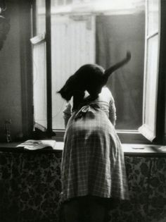 Willy Ronis, (untitled & undated), from Les chats de Willy Ronis