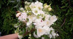 Weddings  Green Meadows Florist. Chadds Ford, West Chester, Philadelphia, Kennett Square, Pennsylvania Wedding Florist  www.greenmeadowsflorist.com
