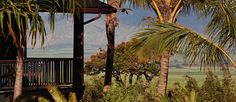 Welcome to Lumeria Maui, a premier wellness retreat in Hawaii featuring luxury accommodations, spa treatments, meeting space, yoga retreats & fine cuisine.