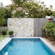 Inground tiny swimming pool in a small backyard that pick the best shape Part 10 Swiming Pool, Small Swimming Pools, Small Pools, Swimming Pool Designs, Backyard Pool Landscaping, Pool Fence, Pool Retaining Wall, Glass Pool Fencing, Landscaping Rocks