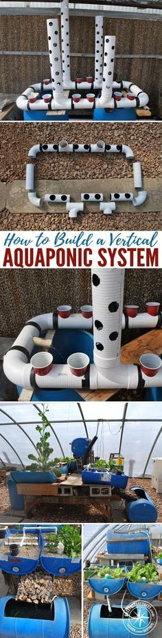 Aquaponics System - How To Build A Vertical Aquaponic System — You can turn a small yard, a corner in a community garden or an unused space in your home into a thriving vertical farm for vegetables and fish. A household-sized vertical aquaponic system can fit into a 3ft by 5ft (1m x 2m) area and feed a family year-round. Break-Through Organic Gardening Secret Grows You Up To 10 Times The Plants, In Half The Time, With Healthier Plants, While the Fish Do All the Work... And Yet... Your ...
