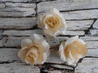Роза парча молочная