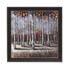 Woodland Imports 92705 Natural Scenery Framed Art