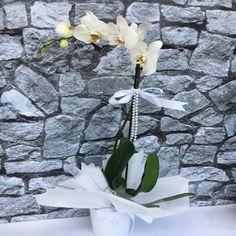 ADANA Çiçek Siparişi 55% İndirim CinarCicekcilik® 29TL www.cicekbahcem.com 'u ziyaret edin. ADANA Çiçek Siparişi her zaman uygun fiyata gönder, kaliteli hizmet ilkemizle Adana'da Çiçek'de farklı görmeniz için ADANA çiçekçi Çiçek Bahçem. https://www.cicekbahcem.com/adana-cicek-siparisi