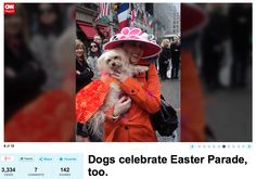 CNN - The annual Easter parade on Fifth Avenue in New York City showcased creative bonnets and festive costumes.   Picture credit: Susan Godwin with her dog Tasha Bella wearing Orostani Couture countryside glamour gown.