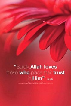 - The Holy Qur'ân 3:159