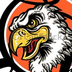 Vectors of eagles basketball team design with mascot head inside... csp31053131 - Search Clip Art, Illustration, Drawings and Clipart EPS Vector Graphics Images