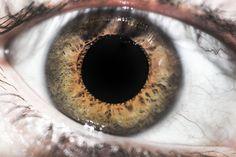 Macro-eyes