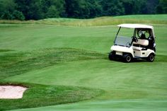 How to Take Care of Celebrity Bermuda Grass