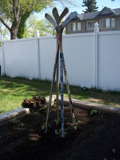 """Use for Andy's old sticks!  """"Cross an ex-hockey mom with an urban gardener and get this awesome hockey stick beanpole."""" photo by @willmimi Edmonton, Alberta, Canada."""