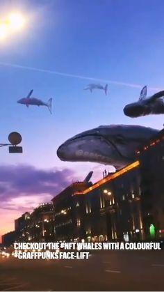 Arabic Eyes, Whales, Blockchain, Crochet Projects, Innovation, Career, Sci Fi, Animation, Illustration