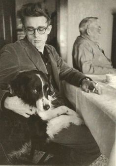 James Dean was a rebel with a dog. His Border Collie. Tuck, was always hanging around his film sets. A cool dog for a cool dude. ~ I love my BC & I love James Dean. Old Hollywood Stars, Classic Hollywood, James Dean Photos, Jimmy Dean, Family Dogs, Best Dogs, Famous People, Real People, Border Collies