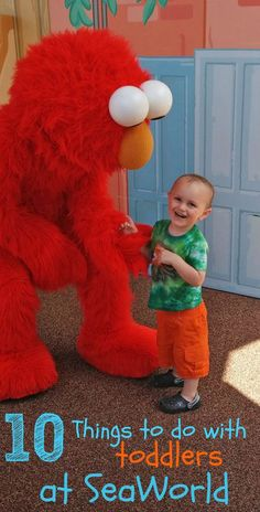 10 Things to Do at SeaWorld with Toddlers