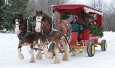 An Old-Fashioned Family Christmas:  Celebrate an old-fashioned Christmas at the Christmas in Wears Valley event in Sevierville. This holiday season will be filled with laughter and happy memories for everyone who attends. There is fun for all and no shortage of things to enjoy in the winter weather. - Click the pin to read more!