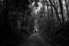 The Path by Dario Barbani