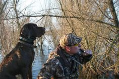 Ducks Unlimited Photo Gallery : HOME Waterfowl Hunting, Duck Hunting, Ducks Unlimited, Photo Galleries, Cute Animals, Birds, Gallery, Dogs, Pretty Animals