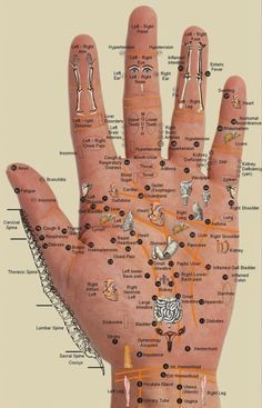 Acupressure Treatment Hand chart - Acupressure points - map - organs Acupuncture charts are an aid in acupuncture treatment. They display the diagrams of the p. Massage Tips, Massage Techniques, Massage Therapy, Art Techniques, Art Therapy, Foot Chart, Acupuncture Benefits, Reflexology Massage, Reflexology Points