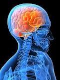 Schöne fotorealistische Umsetzung für das neuronale Geschehen in der Anwendung der Methoden der Energetischen Psychologie.