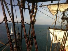 L'Hermione de retour devant Douarnenez après 850 km de navigation en une semaine.