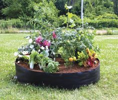Smart Pots Big Bag Bed Fabric Raised Bed :http://amzn.to/1jghUgi