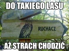 Ruchacz Lesny Very Funny Memes, Wtf Funny, Funny Cute, Funny Jokes, Memes Humor, Funny Images, Funny Pictures, Polish Memes, Funny Mems