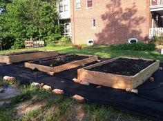 community/neighborhood garden - would love to do one of these in Alliance.  Organic, vegetables, donate whatever it yields to the food bank, shelters, salvation army, etc.