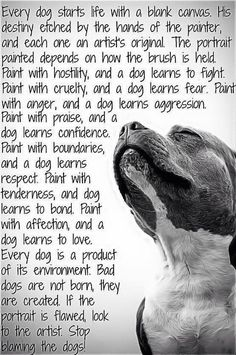 """This is like the truest thing ever and it really makes me mad when people are like """" It's in a pit bulls nature to be aggressive!"""" But it's because of the owner NOT the dog!"""