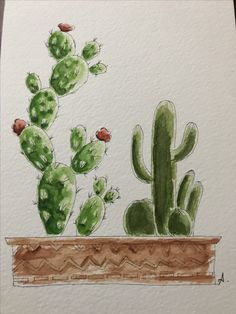 #suluboya#kaktüs#watercolor#cactus