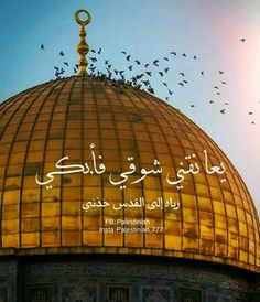 Palestine Quotes, Palestine Art, Arabic Calligraphy Art, Arabic Art, Rare Historical Photos, Dome Of The Rock, Islam Quran, Holy Land, Islamic Art