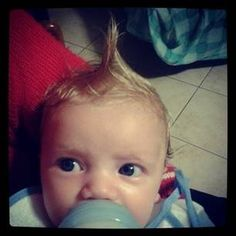 The Little Mohican