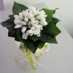 Winter Wonderland, Succulents, Spring, Plants, Beautiful, Floral Decorations, Flowers, Succulent Plants, Plant