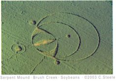 Scott's tattoo source– Crop circle near the Serpent Mound. Ohio.