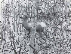 """Gerhard Richter's """"Hirsch"""" (Deer). Mad squeegee deer in movement"""