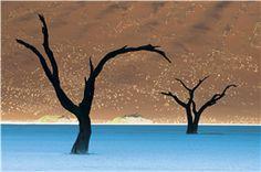 Sossusvlei, Namib-Naukluft National Park, Namibia, 2009 Frans Lanting