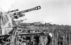 WESPE - 105 mm self propelled howitzer - Batterie de WESPE en position pour un support d'artillerie lors de la bataille de Koursk, le 4 juillet 1943