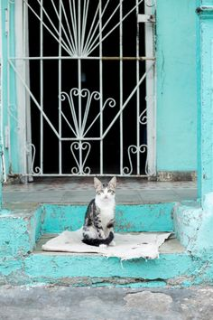 Traveling to Cuba: A