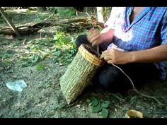 This is a simple tutorial for harvesting bark from a slippery elm tree (or many other trees too) and turning it into a sturdy container. Its a re-upload of a. Mountain Man, Bushcraft Pack, Birch Bark Baskets, Slippery Elm, Living Off The Land, Tree Bark, Nature Crafts, Autumn Trees, Basket Weaving