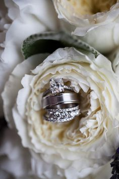 wedding rings in flower