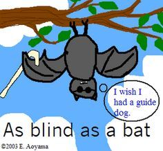 idioms/expressions about reading with images to share - Google Search