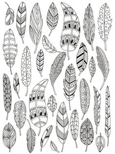 Feathers by Lizzie Preston #coloring