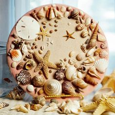 Decorative Shell Plate