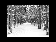 Eric Whitacre, Robert Frost - Stopping by Woods on a Snowy Evening (Sleep)